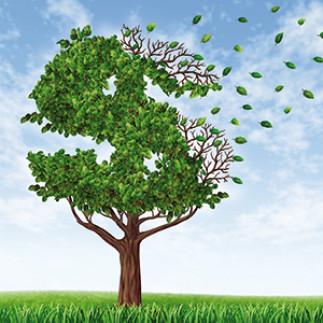 Finances personnelles : planifier, c'est payant !