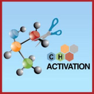 3e colloque international sur l'activation de liens C-H à l'UdeM