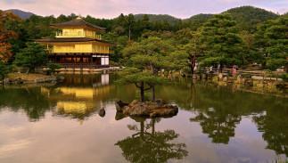 Découvrir le Japon : histoire, culture et économie - Complet
