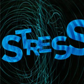 Le stress : notre meilleur ennemi?