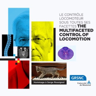 Inscription - Le contrôle locomoteur sous toutes ses facettes - Hommage à Serge Rossignol