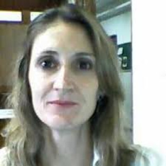 Marileide Dias Esqueda (Fed. U. of Uberlândia, Brazil): Teaching video game translation