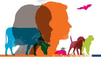 D'hommes, d'animaux et d'environnement : l'approche Une seule santé pour un monde en santé