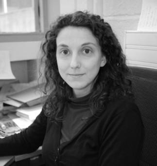 Etude expérimentale des décharges électriques en milieu aqueux - Cathy Rond (CNRS)