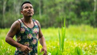 Réalités autochtones de l'Amazonie