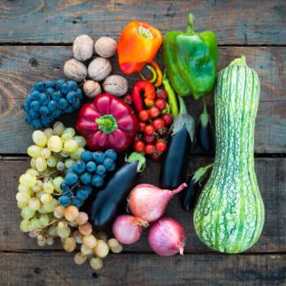 Midi-conférence | Bien se nourrir au-delà des aliments